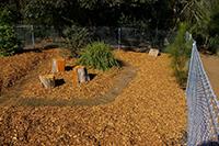 Native Food Garden Before work Started